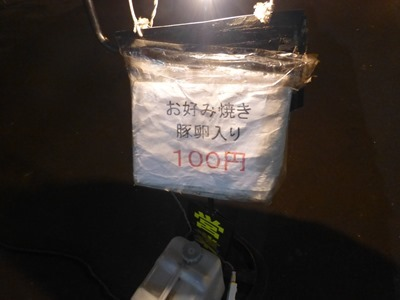 P1060931