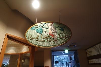 バードウォッチカフェ